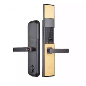 Zinc Alloy Door Handle Biometric Fingerprint Digital Cylinder Smart Access Door Lock